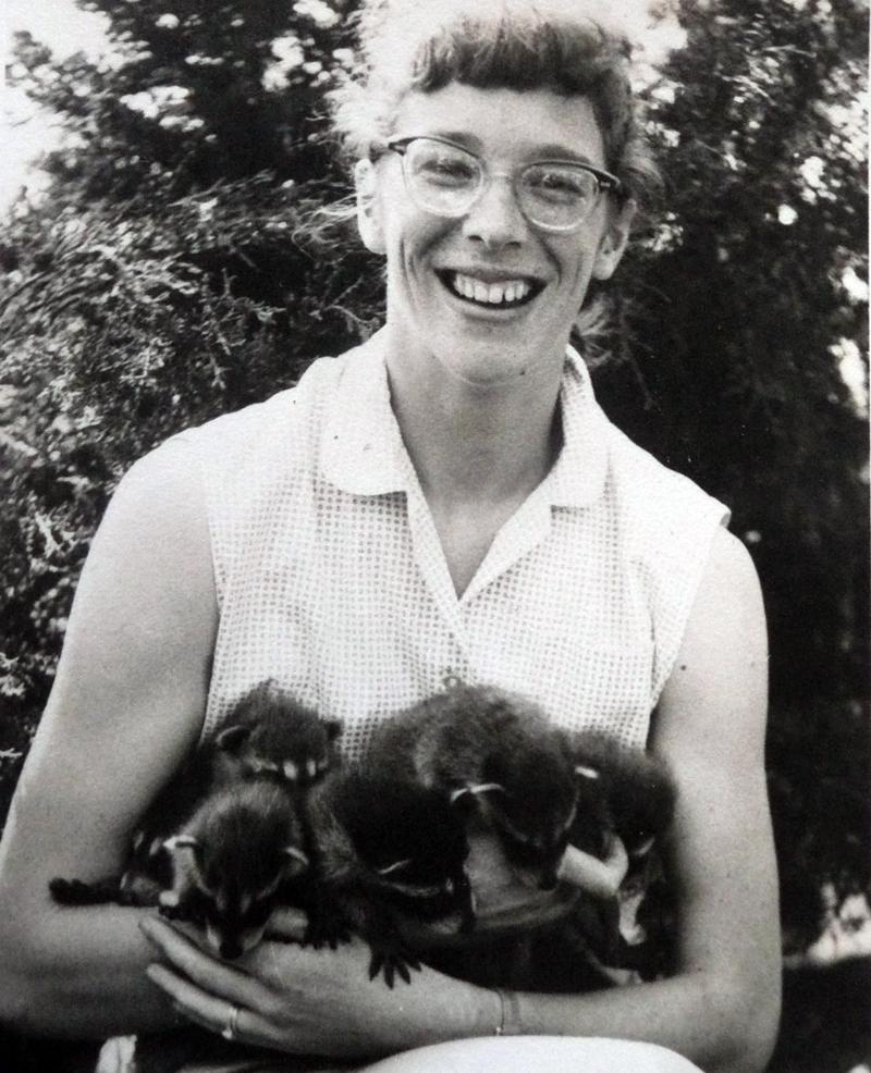 Nancy with seven raccoons. (Photo courtesy Peter Holmes)