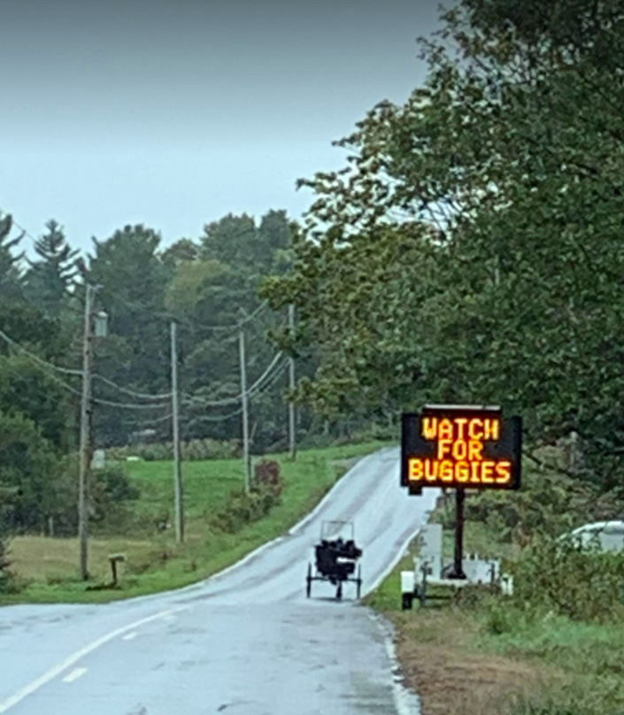 A new road sign in Whitefield and a horse-and-buggy. (Photo courtesy Mary Dunn)
